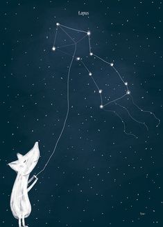 I have this little obsession with the night sky, so last christmas i made this personal project Arctic Constellations. Children's Book Illustration, Night Skies, Oeuvre D'art, Cute Art, Illustrators, Concept Art, Painting, Art Prints, Abstract