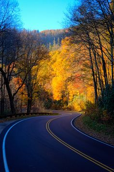 Road To The Colors by Nathan Firebaugh (Website)