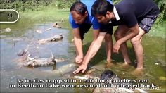 """Top 16 Rescues Of 2016 