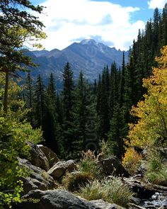 This is one of my favorite places in the U.S, Estes Park, CO.- saw this and missed home