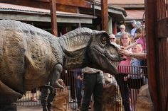 Thrilled to bits that the T-rex we created for #PaultonsPark has gone down so well with the crowds. Lovely photo and write up by Families Solent East who recommend you find 'The Lost Kingdom' at Paultons Park!... #theming