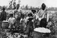 Ages in Which Children Were Required to Work Varied Children were required to begin working in the fields at different ages, depending on the plantation. Forty-eight percent of interviewees in the Slave Narrative Collection recalled being put to work before the age of 7. Before puberty, the tasks given to children did not appear to be gender …