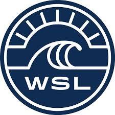 Image result for wsl logo