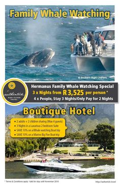Family Whale Watching Special - Enjoy a quality family holiday just outside the beautiful seaside town of Hermanus. The Thatch Hous - Family Activities, Outdoor Activities, Thatched House, Guest Services, Seaside Towns, Whale Watching, Romantic Getaway, A Decade, Family Holiday