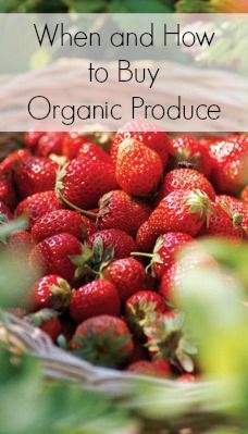 When and How to Buy Organic Produce | Tipsaholic.com