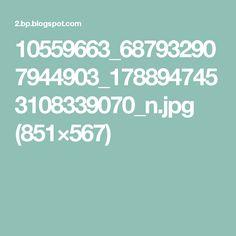 10559663_687932907944903_1788947453108339070_n.jpg (851×567)