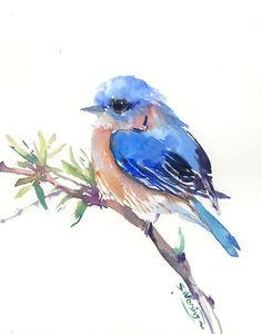 Eastern Bluebird, Original watercolor painting, 10 X 8 in, bluebird lover art, bluebird wall art, bluebird painting $34.00