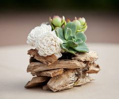 Succulents are placed on top of wood chips for an elegant décor element.