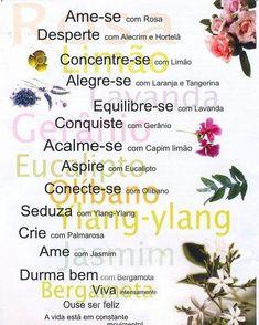 A imagem pode conter: texto Reiki, Nature Witch, Good Spirits, Medicinal Herbs, Doterra Essential Oils, Alternative Health, Book Of Shadows, Health Diet, Feng Shui