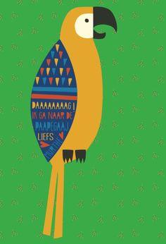 Parrot illustration