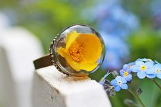 Real buttercup ring  real flower jewellery  by RubyRobinBoutique, €30.00