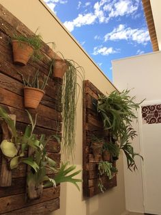 Cool vertical garden on wall pallets. Jardim vertical by Celina Molinari Arquitetura e Interiores Interior Tropical, Wood Grill, Hanging Pots, Amazing Gardens, Ideas Para, Natural Beauty, Canning, Create, Wall