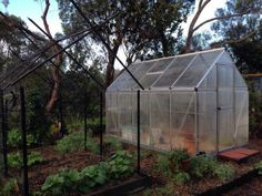 Fogged Greenhouse | Simple Crafty Life  A gallery of photos from the first days of Autumn.
