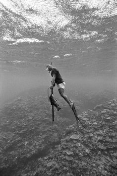 Incredible Black and White Underwater Photography - My Modern Met