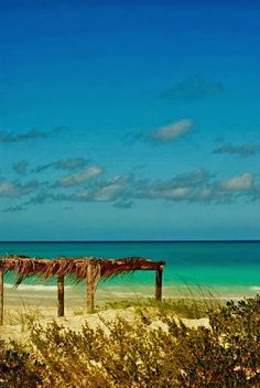 Cayo Coco, Cuba. I can't even describe how badly I want to go to Cuba!