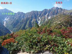 五竜岳遠見尾根から望む「カクネ里雪渓」北アルプス登山ルートガイド。Japan Alps mountain climbing route guide