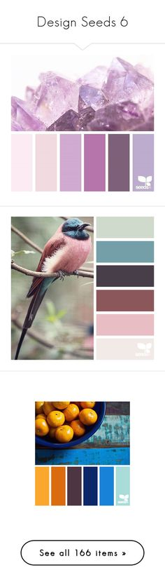 """Design Seeds 6"" by morningstar1399 ❤ liked on Polyvore featuring design seeds, backgrounds, filler, pantone, colors, palette, color palettes, colours, fillers and palettes"