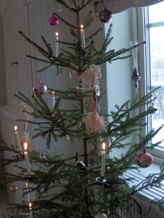 Fågel Blå: My Christmastree...  Old-country Christmas tree candles and Christmas tree candle holders from: www.christmasgiftsfromgermany.com