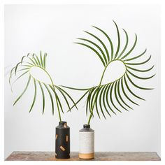 Ben Medansky - ceramic vases