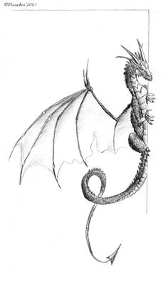 """Dragon by ~Emberiza on deviantART"" This dragon's just waht I'm looking for! Probably only one set of horns on the top though, and five toes total..."