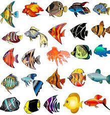 Resultado de imagen para peces enpeces en carton piedra carton piedra pintados