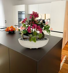 Planter Pots, Single Flowers, Fake Flowers, Floral Arrangements, Orchids