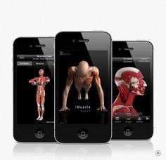 Você chega na academia, é hora de malhar!  Você tem o seu treino na cabeça ou em um papel?    Com o iMuscle você pode criar diversos tipos de treinos de musculação, com possibilidade de escolher por grupo muscular.    Com uma navegação em 3D, você pode procurar locais específicos do corpo que deseja malhar, ajudando a transformar a musculação em algo dinâmico e prazeroso.