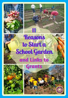 11 reasons you should plant a school garden with links to info on how to start one and where to obtain funding for a school garden The ESL Connection Garden Junk, Easy Garden, Wooden Garden, Garden Art, Garden Design, Garden Whimsy, Diy Garden Projects, Art Projects, Garden Ideas