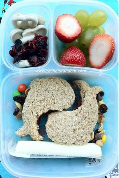 Critter Cutter #lunchpunch PB with trail mix, craisins, yogurt pretzels, grapes, and strawberries.  #bento #vegetarian #easylunchboxes