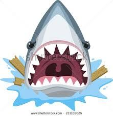 Image result for shark head clip art