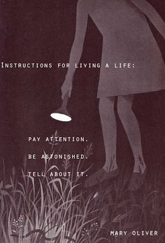 "Mary Oliver, ""Instructions for Living a Life. Pay attention. Be astonished. Tell about it."""