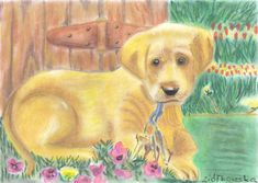 Technique: dry chalks Size: A4 A4, Dogs, Painting, Collection, Doggies, Painting Art, Paintings, Dog