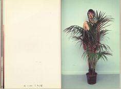 Bilderesultat for Mark Borthwick Book Design, Design Art, Print Design, Mark Borthwick, Office Plants, Weird And Wonderful, Book Photography, Light Art, Art Direction