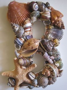 Beach+Decor+Seashell+Letter++Deep+Colors+and+Exotic+by+LiveCoastal