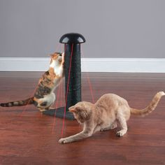 Feline Laser Chasing Scratch Post Will Keep Your Cats Entertained For Days On End -  #cats #laser #toys