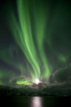 Aurora Borealis Webcam | Tromsø - Nord-Norwegen - 23.02.- 12.03. 2012