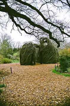 Brooklyn Botanical Garden Patrick Dougherty installation