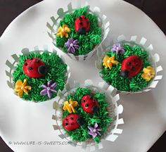 Ladybug Cupcakes - How To Included