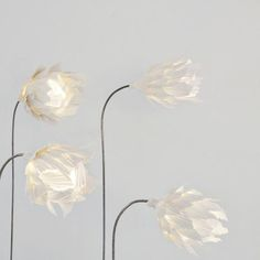 Violise Lunn - Light Flowers  photo by STAMERS KONTOR Modern Lighting Design, Flower Lights, Flower Photos, Lamp Design, Light Fixtures, Paper Art, Art Gallery, Spaces, Mood
