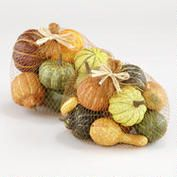 Mixed Gourds - centerpiece, among foliage