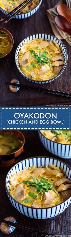 Oyakodon (Chicken and Egg Bowl) 親子丼 • Just One Cookbook
