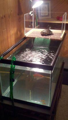 ♥ Pet Turtle ♥ A DIY turtle topper above tank basking platform provides a nice basking area ~ Pet care ideas.: