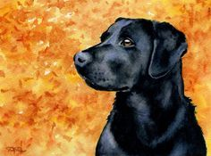 BLACK LAB Dog Watercolor Signed Fine Art Print by by k9artgallery