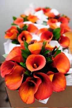 Orange calla lillies make such stunning wedding flowers. Look how deep the colour is! This flower comes in lots of other hues also.