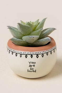 Dazzling Yet Beautiful Diy Cactus Pots That Everyone Can Make 21 Growing cactus indoors is a relatively simple process. Although, most of the cactus plants tolerate neglect, they thrive properly when … Painted Plant Pots, Painted Flower Pots, Pots D'argile, Clay Pots, Pots For Plants, Cactus Pot, Cactus Flower, Cactus Plants, Succulent Pots
