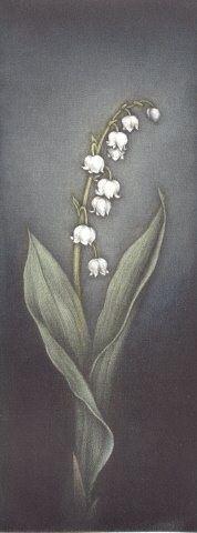 Lily of the valley - Mezzotint by Koji Ikuta (Japan, b. 1953)