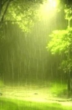 It will rain in Heaven for those who love to dance in the rain! kn nature bathes the world in beauty! I Love Rain, No Rain, Rain Storm, Walking In The Rain, Singing In The Rain, Rainy Night, Rainy Days, Beautiful World, Beautiful Places