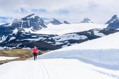 4 July 2016. Sognefjell Norway. #mikaelsvenssonphotography #thebestofscandinavia #bestofscandinavia #naturemoments #outdooradventurephotos #outdoors #iamnikonsummer #landscape_lovers #landscape_captures #ig_mountain #outdoorlife #norway #jotunheimen #lifeisgood #ig_mood #sognefjellet #visitjotunheimen #sognefjellshytte #langrenn #crosscountryskiing #outdoorwomen #outdoorfitness #outdoortraining
