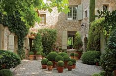 Gorgeous Courtyard!  Interesting that it's all greenery and no flowers, but it works!