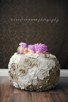 lavender lace ~ caralee case photography